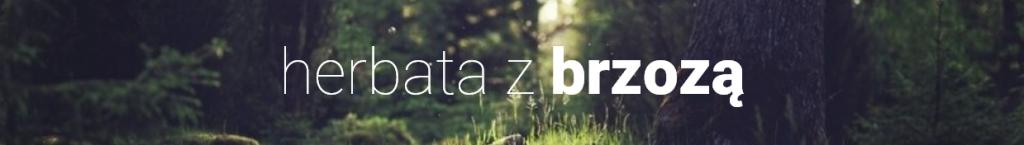 herbata_z_brzozą